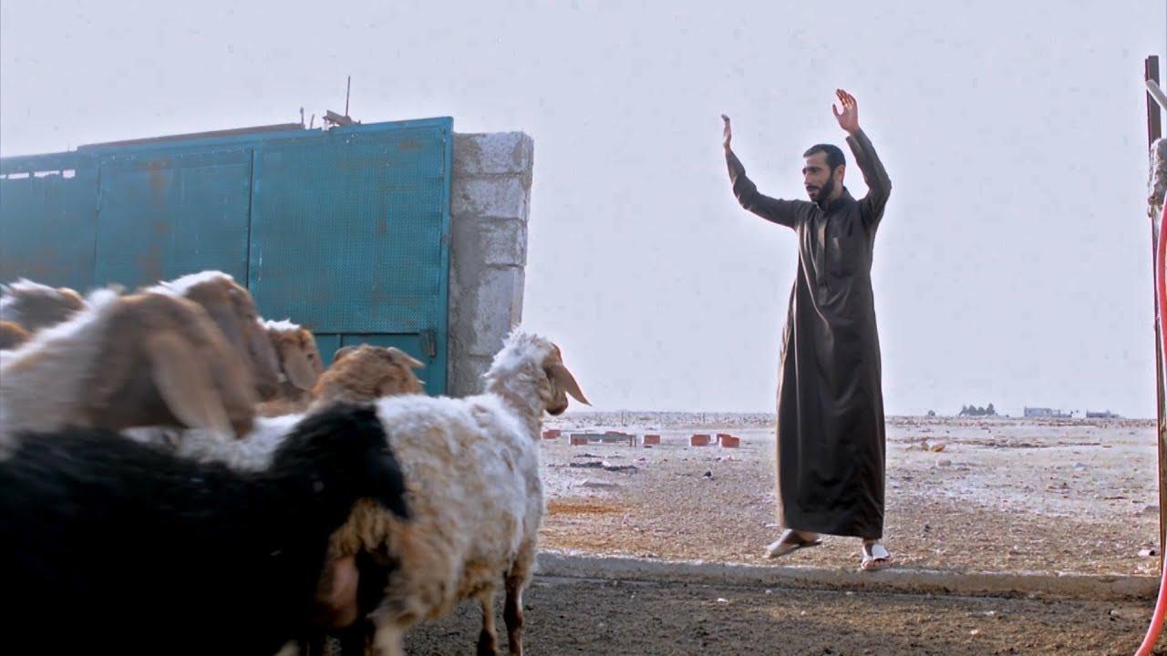 Иордания: инвестиции в сельское хозяйство для всех