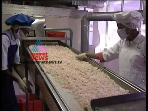 """Organic Prawn Farming""-Money Time 10,June 2012 Part 2"