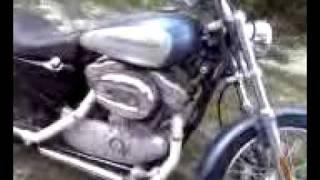 10. 2005 Harley Davidson 883 Custom