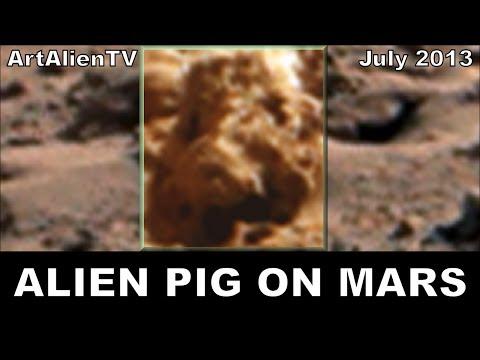 "Mars Curiosity Life Evidence: Alien Pig NASA Anomaly: Soundisciples ""Micropig"". 1080p ArtAlienTV"