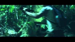 Nonton Indigenous  Trailer 2014  Film Subtitle Indonesia Streaming Movie Download