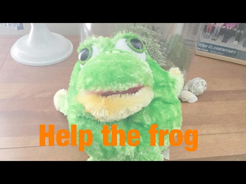 Stuffed Animals Are Swag Too! | Frog