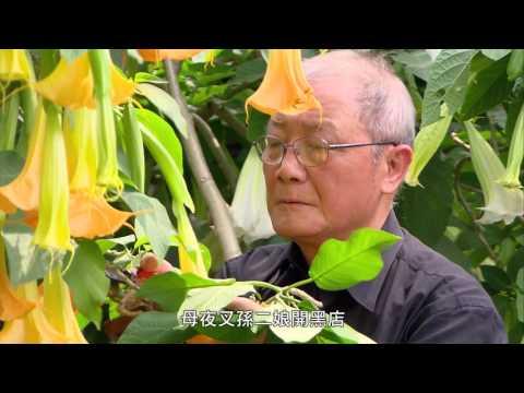 臺灣文化縮影 華陶窯
