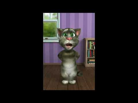 Video Hath Ma Chhe Whisky Funny Version (Gujrati Song) By Talking Tom download in MP3, 3GP, MP4, WEBM, AVI, FLV January 2017