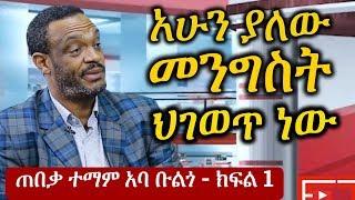 Ethiopia: አሁን ያለው የኢትዮጵያ መንግስት ህ አይደለም - ተማም አባ ቡልጎ | Temam Aba Bulgo Part 1