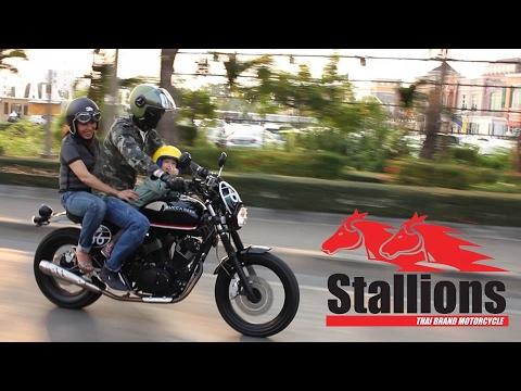 Stallions Buccaneer