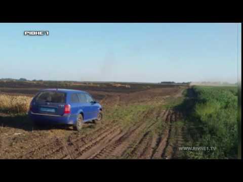 На Гощанщині хтось спалив 18 гектарів збіжжя [ВІДЕО]