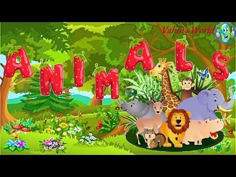 Wild animals and their Babies | Wild animals | wild animal baby names