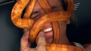 SNAKE MASSAGE AT MY REPTILE ZOO!!! | BRIAN BARCZYK by Brian Barczyk