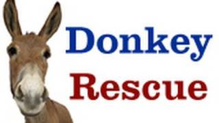 Donkey Rescue - Please Share on Facebook & Twitter.
