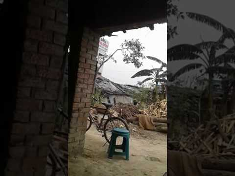 Video Sanjeev tajpur bihar 7352395555 download in MP3, 3GP, MP4, WEBM, AVI, FLV January 2017