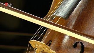 Kinsky Trio Prague zahrálo pro Mohelnici
