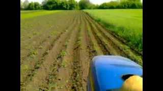 Трактор Европард-244 (прополка картошки 2012р.) ч.2