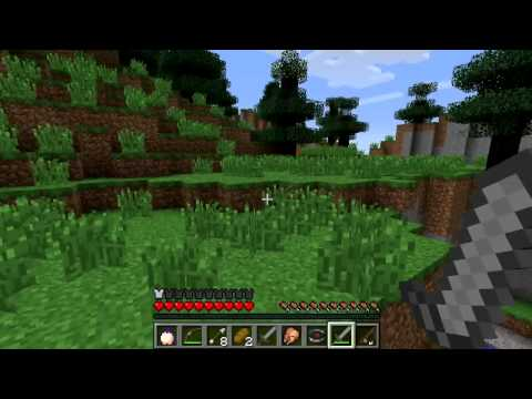 Minecraft Hunger Games! Part #1 Video