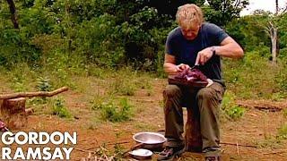 Video Gordon Ramsay Cooks Buffalo For A Cambodian Tribe | Gordon's Great Escape MP3, 3GP, MP4, WEBM, AVI, FLV Maret 2019