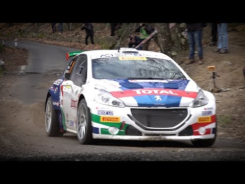 Rally Sanremo 2018 - Peugeot 208 T16 e Paolo Andreucci - Shakedown