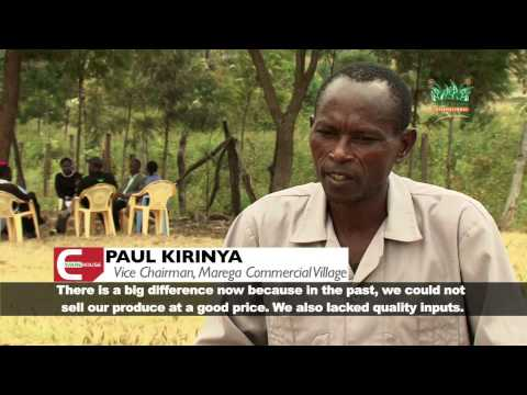 Smallholder - Tailored Market Access