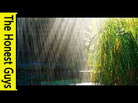 Video 3 HOURS Relaxing Music with Rain Sounds Meditation download in MP3, 3GP, MP4, WEBM, AVI, FLV January 2017
