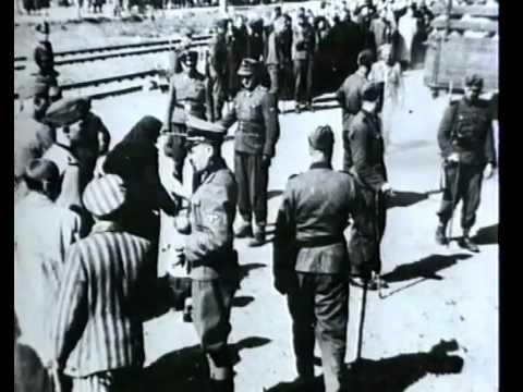 Holocaust: Auschwitz - Erinnerungen des Häftlings Numme ...
