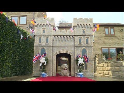 Schloss Windsor als Hundehütte für einen West Yorkshi ...