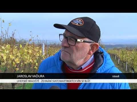 TVS: Uherské Hradiště 8. 11. 2017