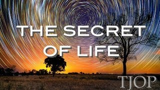 This Is The Secret Of Life