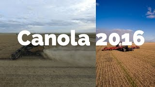 Nonton Canola Harvest and Winter Wheat Seeding 2016 Film Subtitle Indonesia Streaming Movie Download