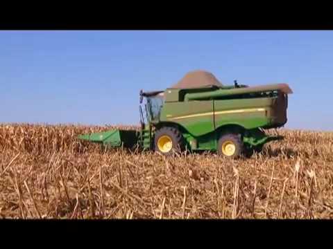 Previsão para segunda safra do milho em Minas Gerais preocupa produtores