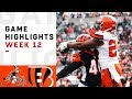 Cincinnati Bengals Football Game 2019