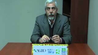 Enrique Moretti