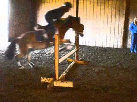Jumping Lesson On Jamie