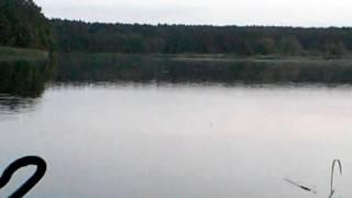 рыбалка в бердичеве прогноз клева