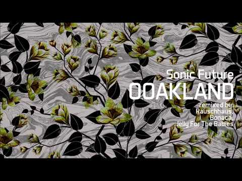 Sonic Future - Ooakland (Jelly For The Babies Remix)
