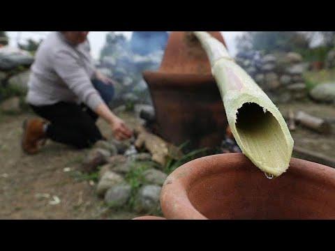 Κύπρος: Τα αρχαιότερα αρώματα στον κόσμο