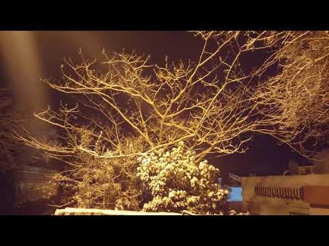 גדעון מורן צילומי שלג