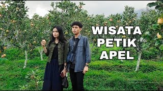 "Video WISATA PETIK JAMBU APEL STAWBERRY ""BATU"" MALANG HARI PERTAMA MP3, 3GP, MP4, WEBM, AVI, FLV November 2018"