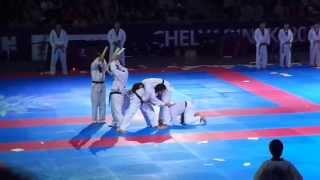 Taekwondo Chelyabinsk Russia Open 2013 Korean Tigers