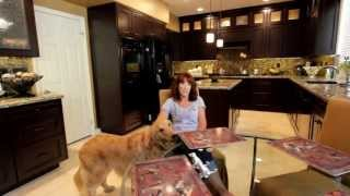 Customer Testimonial & Tour on Kitchen Remodel in Laguna Niguel by Alex Tabrizi CKD, GC
