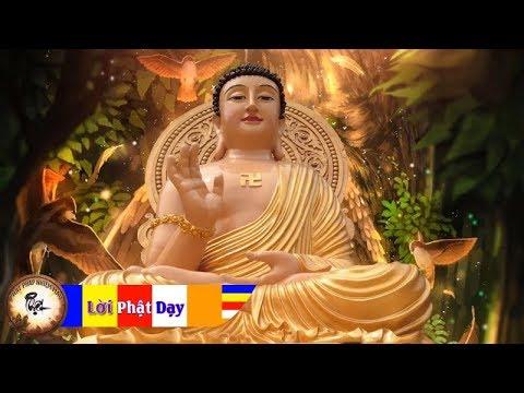 Không Cần Vận May - Chỉ Cần Học Lời Phật Dạy Số Mệnh Sẽ Thay Đổi - Sống Chết Bình An 3-5 p2 - Thời lượng: 3 giờ, 39 phút.