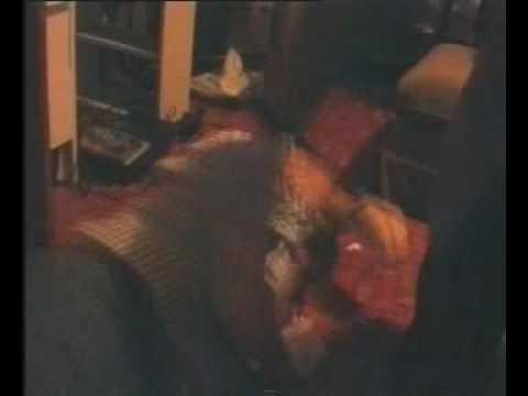 (Lock Stock Parody) Cock Rock and Two Smoking Jackets (видео)