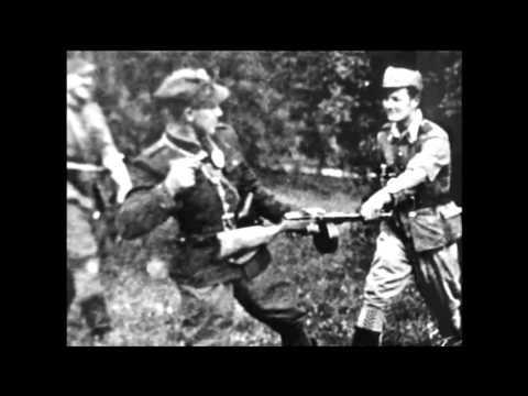 Tekst piosenki Forteca - Żołnierze wyklęci - Niezłomni żołnierze po polsku