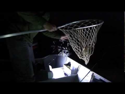 Pescaria em Inajá-Pr, Prainha do Pitô! - 04