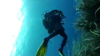 Ustica Italy  City new picture : Four Dive Site Video - Scuba Diving Ustica, Italy - Aeolian Islands