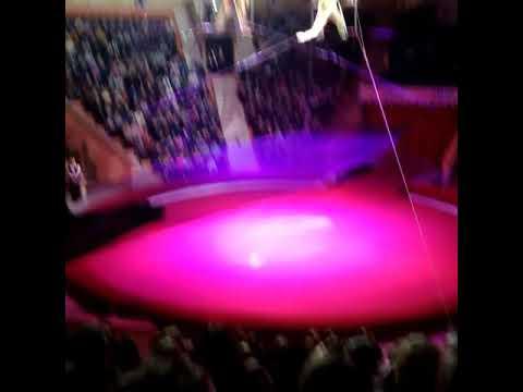 Гимнастка из России упала во время выступления и попала в реанимацию (видео)