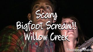 Nonton Bigfoot Willow Creek Scary Tent Scene Film Subtitle Indonesia Streaming Movie Download