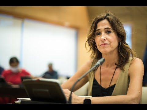 Rosa Romero en el Grupo de Trabajo de Servicios Sociales