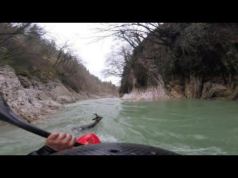 Kajakarze ratują jelenia przed utonięciem w rzece