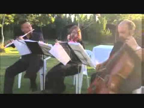 are you getting married  music for weddings alicante rebate
