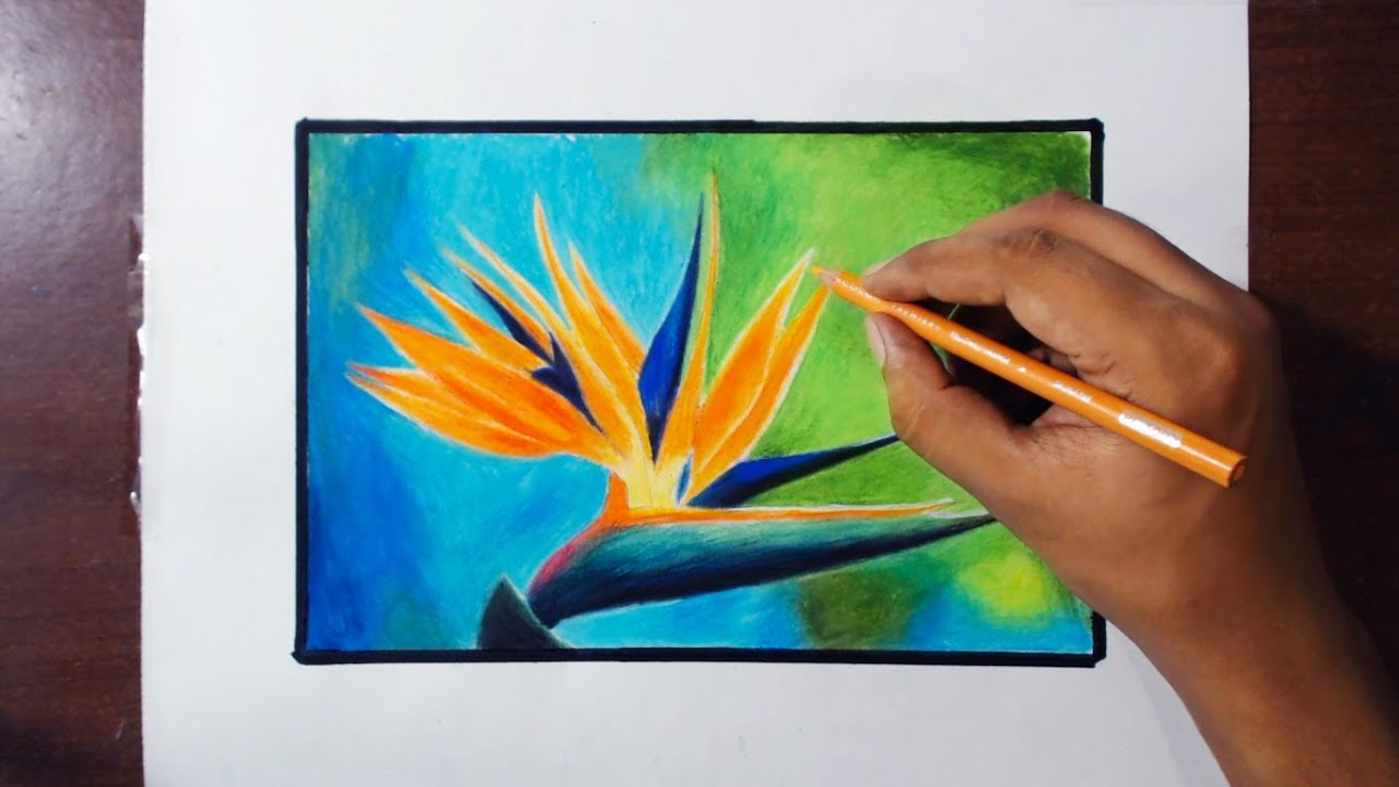 Paradise Bird Flower Drawing Tutorial by fadil