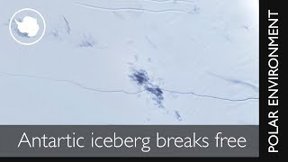 Huge Antarctic iceberg finally breaks free After months of 'hanging by a thread' a vast iceberg the size of Norfolk has finally broken off Antarctica's Larse...